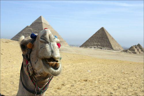 Когда откроется египет для туристов в 2018 году